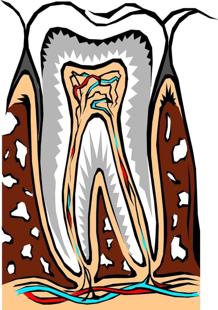 How To Guide: Tooth Nerve Pain Relief